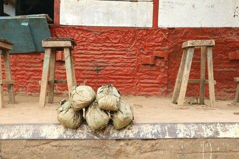 Congo : le manioc à la croisée des chemins