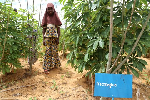 Au Niger, il suffit parfois d'un jardin