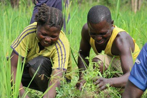 Paoua renaît de ses cendres grâce aux achats locaux du Programme Alimentaire Mondial