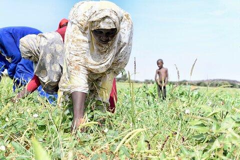 Développement durable en Mauritanie : des investissements qui portent déjà leurs fruits — Episode 4