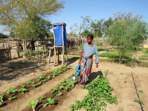 Prévenir la malnutrition chronique pour renforcer la résilience dans le sud
