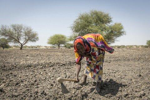 5 raisons pour lesquelles le changement climatique entraîne la faim dans le monde