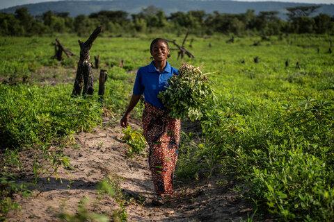 Nourrir la paix: le PAM et la FAO travaillent pour mettre fin aux conflits et à la faim en RDC