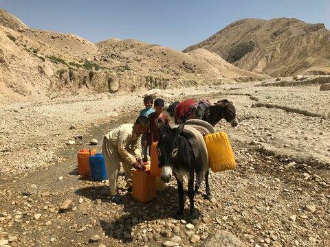 Sous l'emprise de la faim : seulement 5 pour cent des familles afghanes ont assez à manger