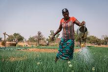 L'UE et le PAM s'associent pour améliorer la nutrition dans le Sahel Central en renforçant les systèmes alimentaires locaux