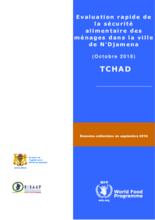 Tchad - Evaluation rapide de la sécurité alimentaire des ménages dans la ville de N'Djamena, Février 2019