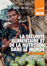 SOFI 2019 : L'état de la sécurité alimentaire et de la nutrition dans le monde