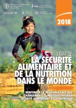 Publication du rapport de l'état de la sécurité alimentaire et de la nutrition dans le monde